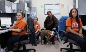 Pet Alliance of Greater Orlando Receives Grant for